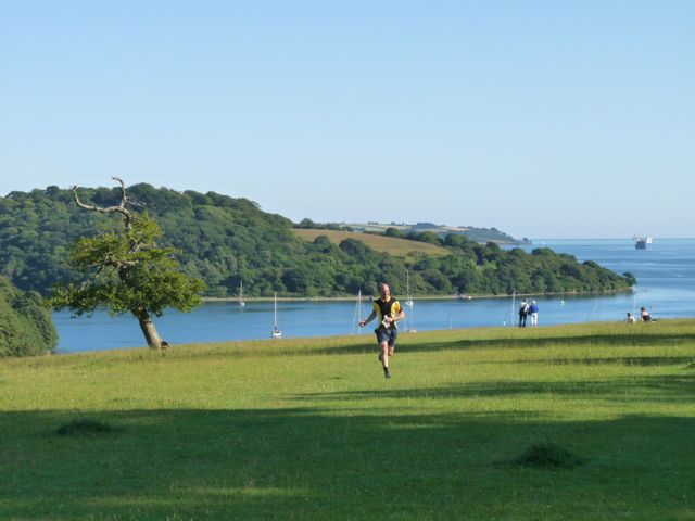 Runner at Trelissick